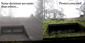 before-and-after-roof-repair