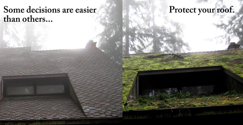 Tampa Roof Repair Tampaexteriors 813 659